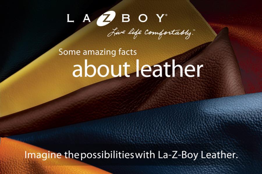 La-Z-Boy Leather